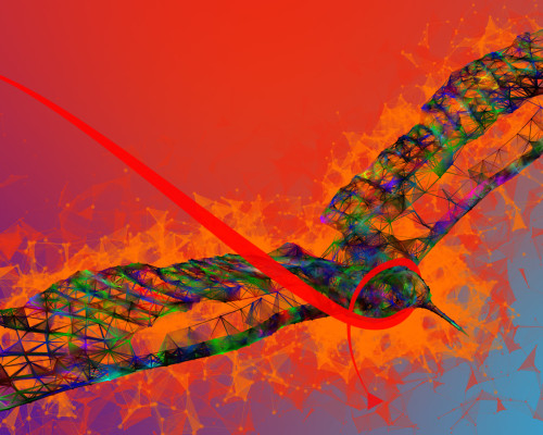 Humming-eagle